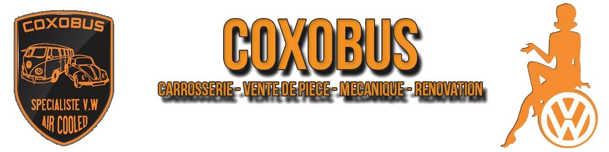 Coxobus
